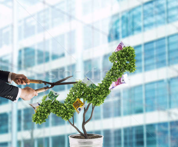 Businessman that cuts and adjusts money tree shaped like an arrow stats. Concept of startup company  Stock photo © alphaspirit