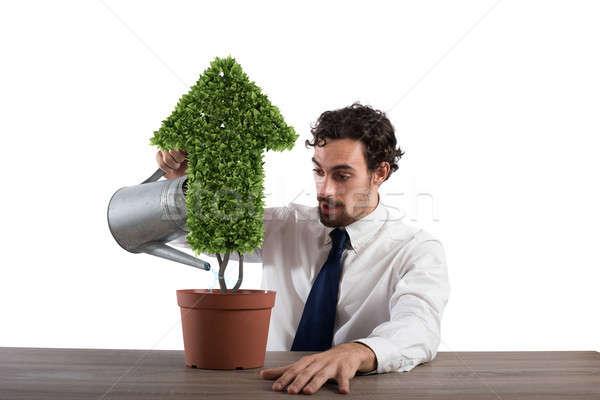 Biznesmen roślin arrow rozwój Zdjęcia stock © alphaspirit
