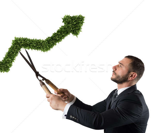 Businessman that cuts and adjusts a plant shaped like an arrow stats. Concept of startup company . 3 Stock photo © alphaspirit