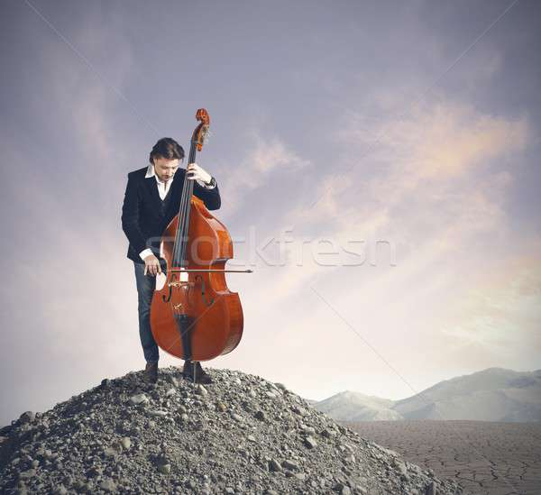 Müzisyen oynama bas çöl müzik dağ Stok fotoğraf © alphaspirit