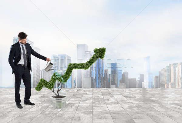 Zakenman plant vorm pijl groeiend Stockfoto © alphaspirit