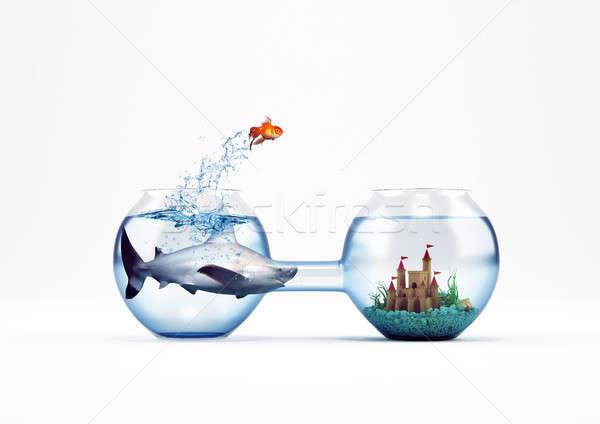改善 進捗 ジャンプ 金魚 3D レンダリング ストックフォト © alphaspirit