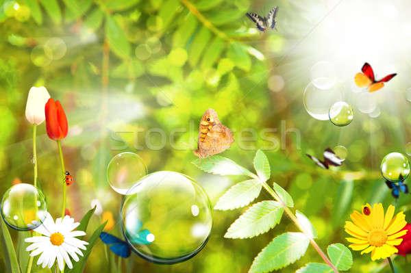 Soap ball and nature Stock photo © alphaspirit