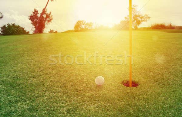 Golflabda lyuk fűmező zöld fű mező fű Stock fotó © alphaspirit