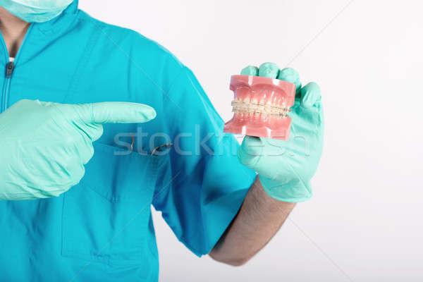 Dentist shows how to apply a brace Stock photo © alphaspirit