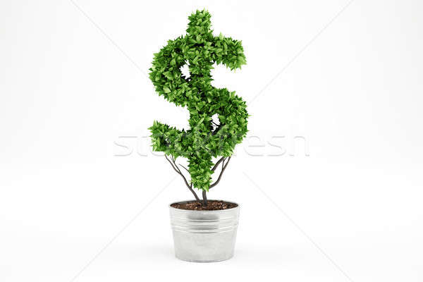 Potted plant with dollar shape. 3D Rendering Stock photo © alphaspirit