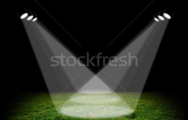 Rampenlicht grünen Stadion Gras Fußball Bereich Stock foto © alphaspirit