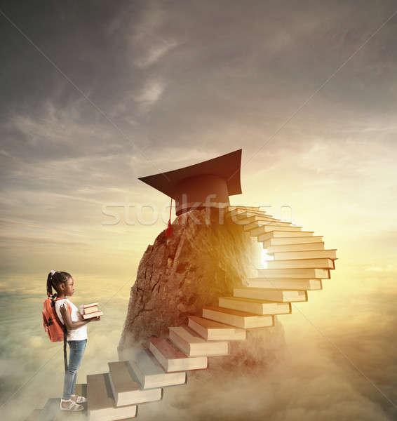 Aspire to prestigious roles by climbing a ladder of books Stock photo © alphaspirit