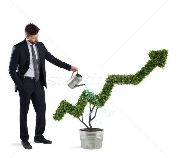 Businessman that watering a plant with a shape of arrow. Concept of growing of company economy . Stock photo © alphaspirit
