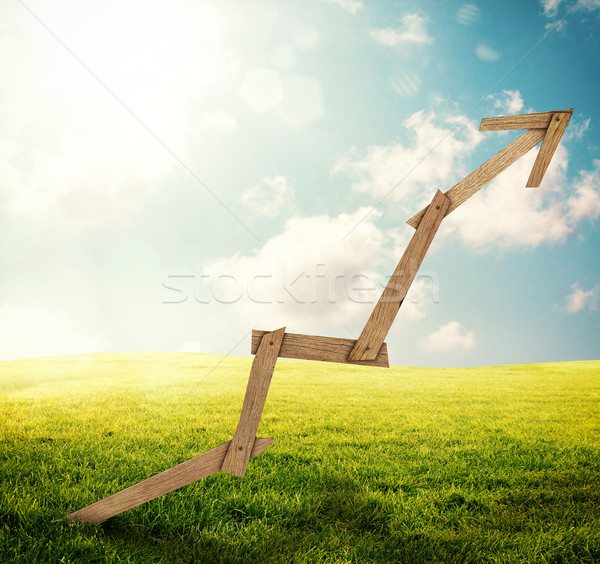 Sustainable development Stock photo © alphaspirit
