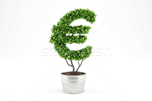 Potted plant with eur shape. 3D Rendering Stock photo © alphaspirit
