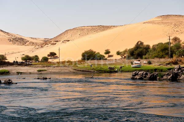 Nile and desert Stock photo © alphaspirit