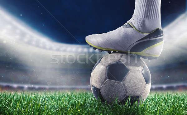 Piłkarz stadion gotowy świat kubek Zdjęcia stock © alphaspirit