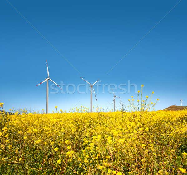 ветровой турбины желтый области трава пейзаж зеленый Сток-фото © alphaspirit