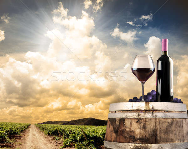 Stock photo: Wine still life against vineyard