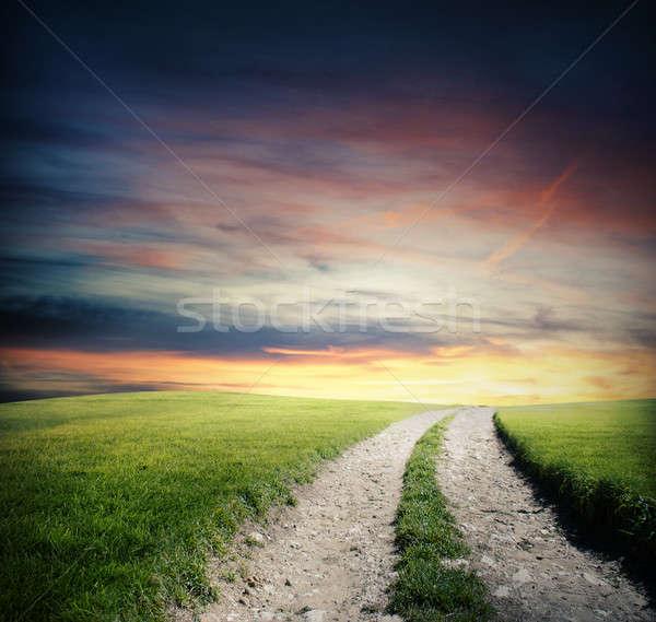 Verde campo manera pequeño carretera Foto stock © alphaspirit
