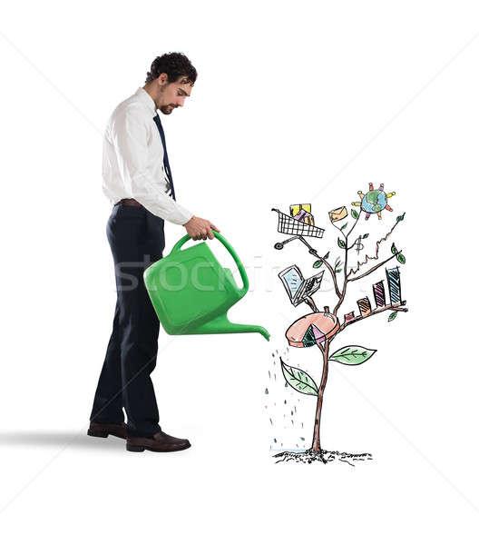 Creciente economía empresario plantas gráfico Foto stock © alphaspirit