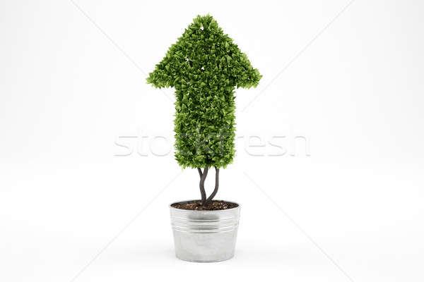 Groeiend economie bedrijf 3D plant Stockfoto © alphaspirit