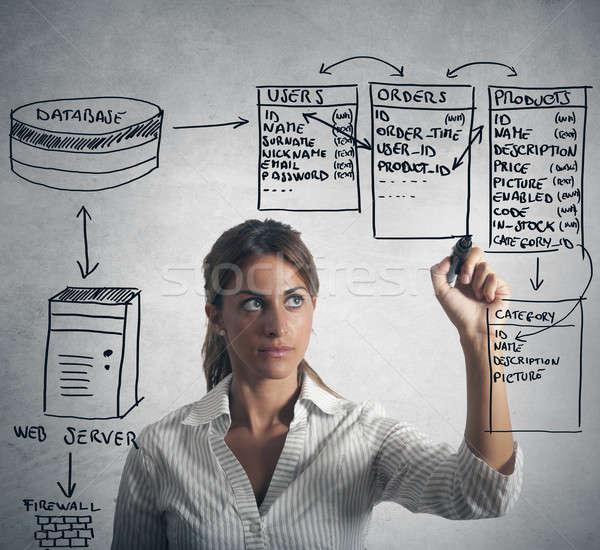Bazy danych kobieta interesu rysunek struktury działalności komputera Zdjęcia stock © alphaspirit