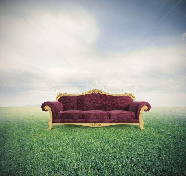 Relaxar conforto veludo vermelho sofá verde Foto stock © alphaspirit