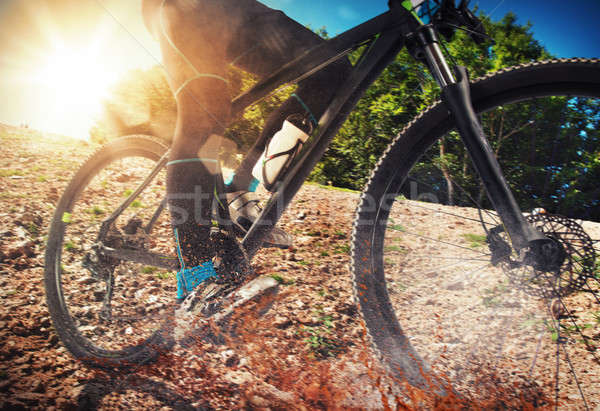 Mountain bike terreno ciclismo terra pedras árvore Foto stock © alphaspirit