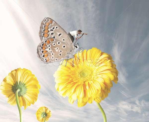 Businessman on a butterfly Stock photo © alphaspirit