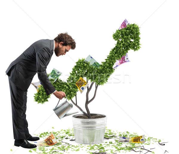 Groeiend economie zakenman geld munten Stockfoto © alphaspirit
