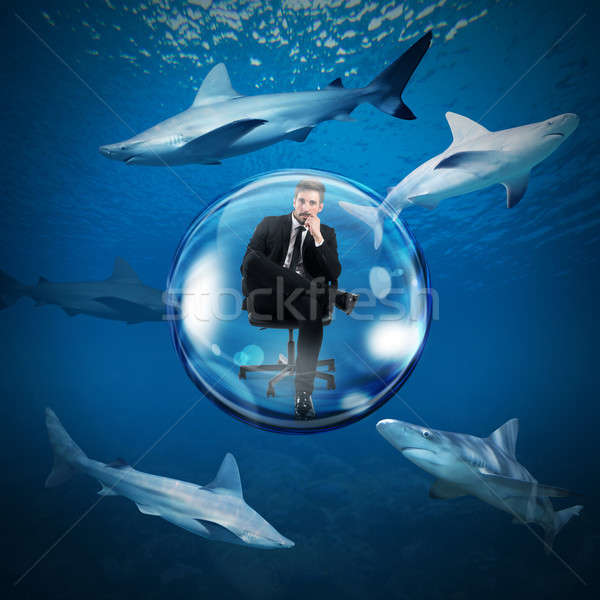 Güvenli dünya köpekbalıkları işadamı kabarcık su Stok fotoğraf © alphaspirit