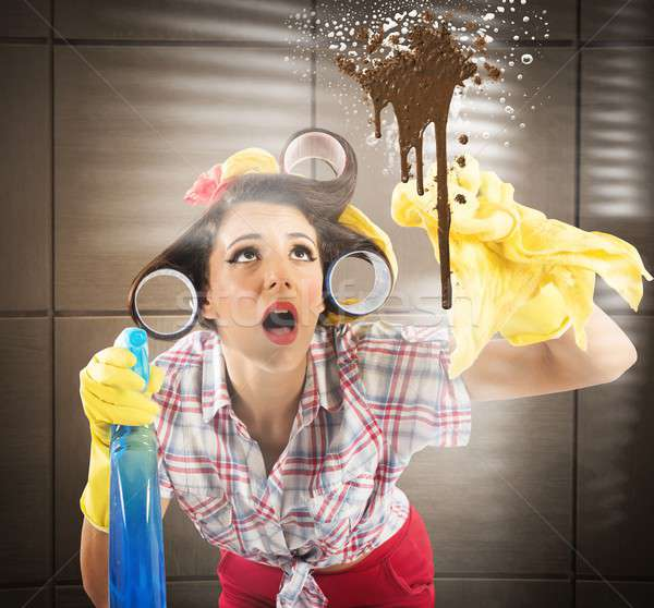 Busy housewife Stock photo © alphaspirit