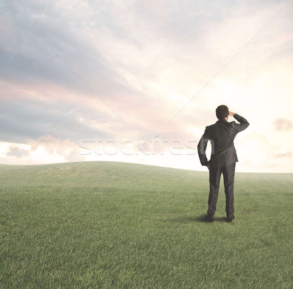 Geschäftsmann neue Business Chancen Gras Mann Stock foto © alphaspirit