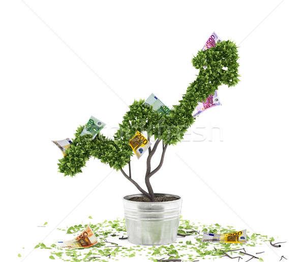 Creciente economía empresa empresario planta Foto stock © alphaspirit