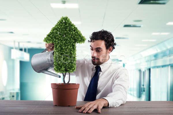Stockfoto: Zakenman · plant · vorm · pijl · groeiend