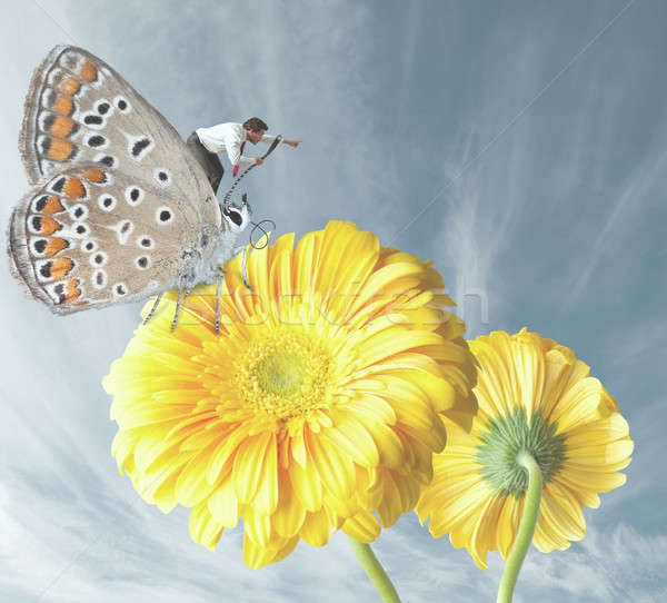 Businessman escapes with a butterfly Stock photo © alphaspirit