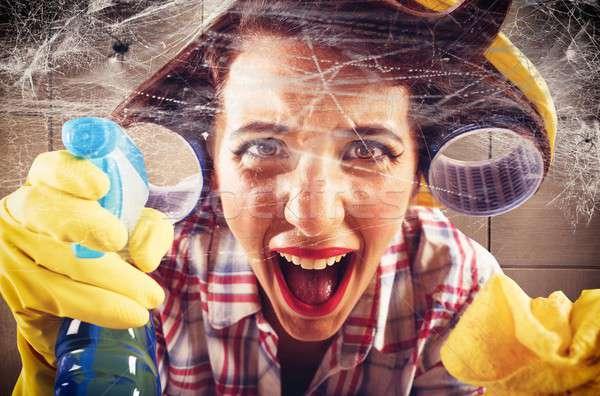 Gospodyni domowa zdesperowany kobieta domu krzyk pająk Zdjęcia stock © alphaspirit