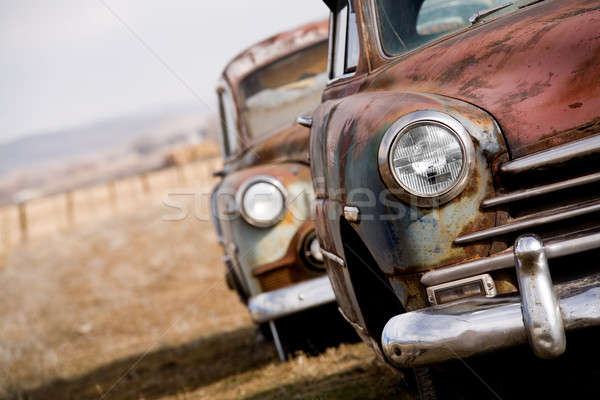 abandoned cars Stock photo © alptraum