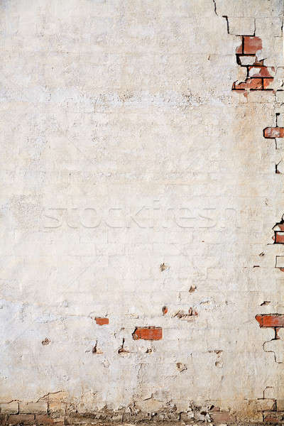 grunge wall background Stock photo © alptraum