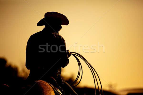 Rodeo cowboy silhouet nota touw persoon Stockfoto © alptraum