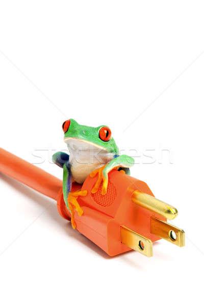 Yeşil enerji kurbağa yalıtılmış yeşil yenilenebilir enerji Stok fotoğraf © alptraum