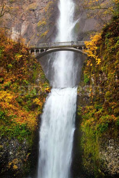 Waterval Oregon tweede schoonheid vallen Geel Stockfoto © alptraum