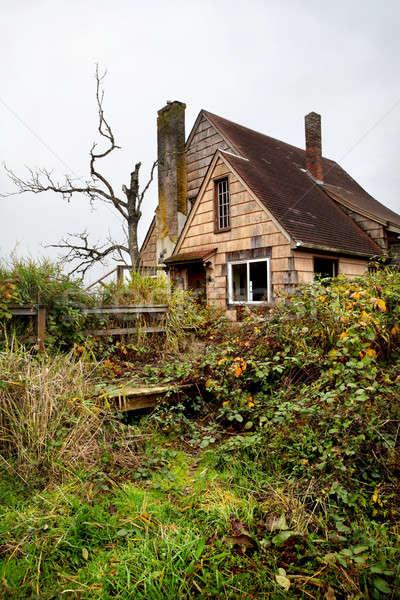 Abandoned overgrown house Stock photo © alptraum