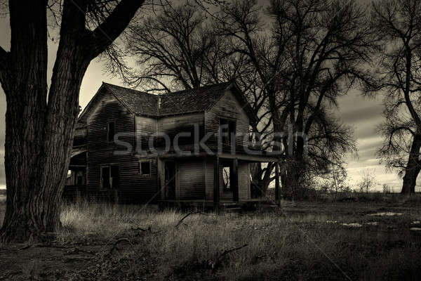 Maison monochrome coup rural Wyoming Photo stock © alptraum