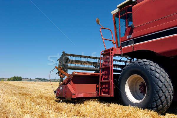 combine harvester on field Stock photo © alptraum