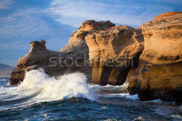 Okyanus dalgalar manzara Oregon sahil büyük Stok fotoğraf © alptraum