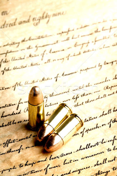 Helyes medve karok lövedékek számla jogok Stock fotó © alptraum