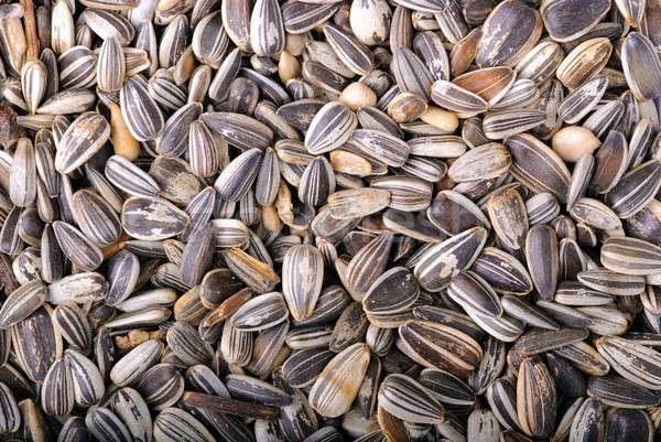 Girasol semillas primer plano alimentos sol salud Foto stock © Alsos