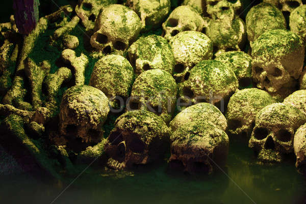 Humanos huesos verde niebla noche Foto stock © Alsos
