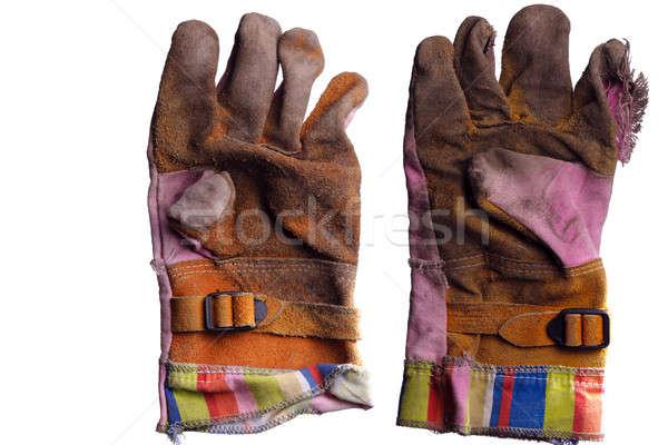 Work Gloves Stock photo © Alsos