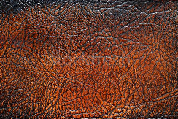 Brown leather texture Stock photo © Alsos