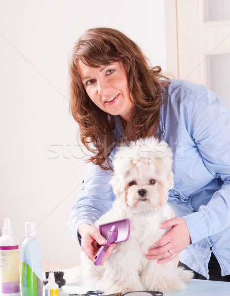 Perro mujer sonriente mano pelo belleza trabajador Foto stock © Amaviael