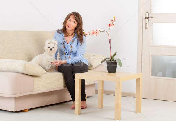 Cão proprietário pequeno sessão sofá casa Foto stock © Amaviael